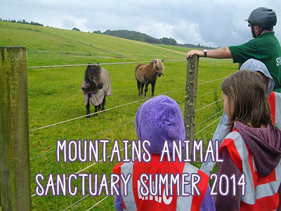 mountains-animal--sanctuary-summer-2014